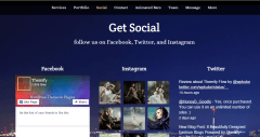 Social page of Parallax theme
