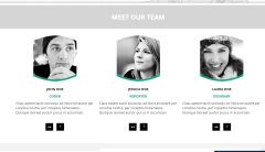 Team's page of Design Portfolio theme