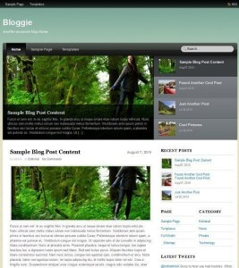 Themify-Bloggie-Theme-Wordpress-Responsive-theme