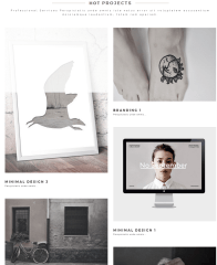 Aneta- Portfolio section