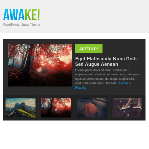 Awake Modern, Metro-Styled WordPress Theme