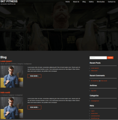 Blog-SKT-themes-WordPress-theme