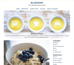Bluesand- Front page of this theme