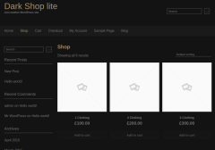 Dark shop lite wordpress shop