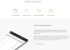 Evoke Many Features Page