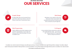 Gaga Lite Services Page