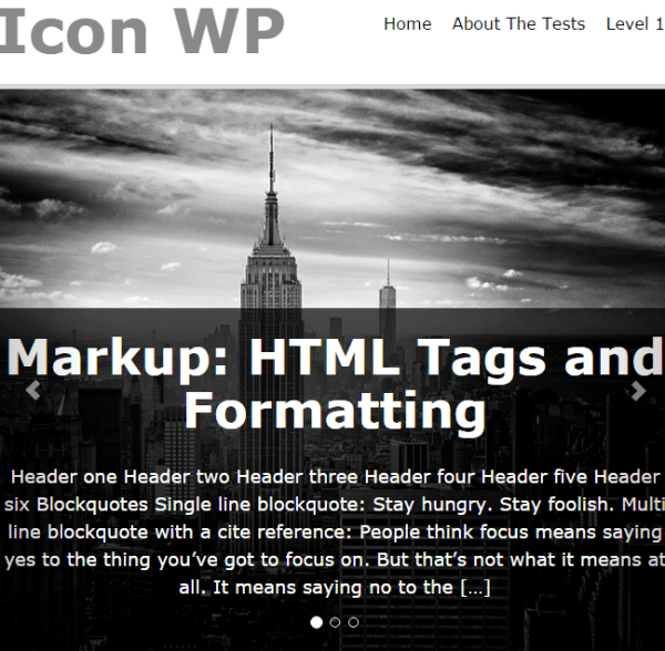 Icon WP- A WordPress theme for blogging websites