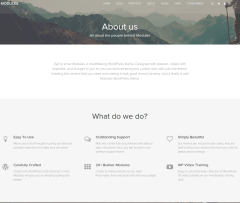 Modules-WordPress-theme-