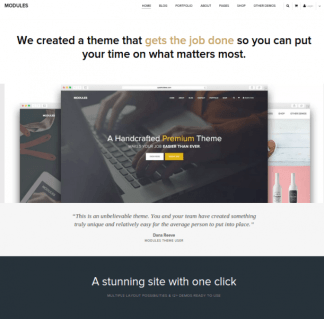 Modules-WordPress-theme