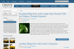 Onyx Blog Page
