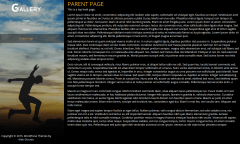 Portfolio Gallery Parent Page
