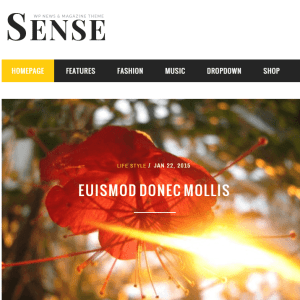 Sense- A magazine and blogging WordPress theme