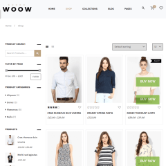 Shop-WooW-WordPress-theme