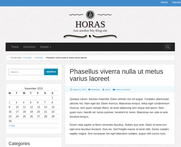 Single-PAge-WordPres-theme
