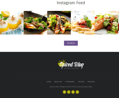 Spiced Blog – Instagram feed and footer