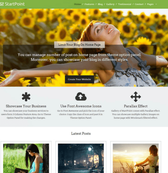 StartPoint – One page Business WordPress theme