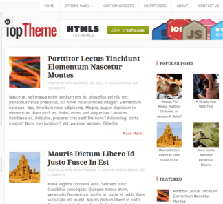 Top WordPress theme for blogging