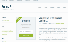 WordPress-Theme-Focus-Pro