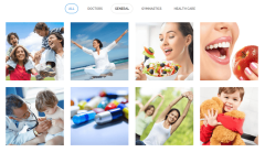 4-column gallery of Health Plus theme