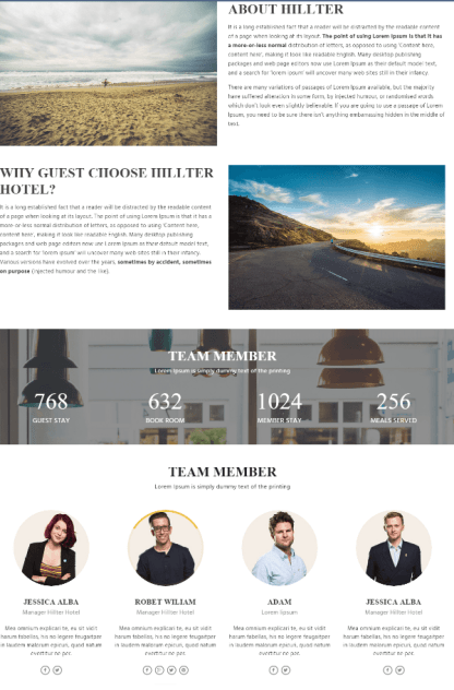 About us page of Hillter theme