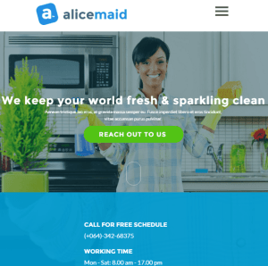 Alice - A multipurpose multiconcept WordPress theme