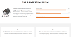 Artcore Professionalism Page
