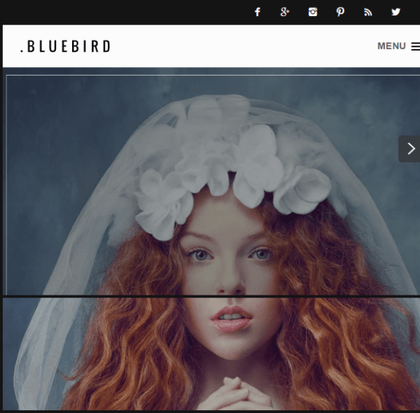 Bluebird - WordPress Portfolio theme