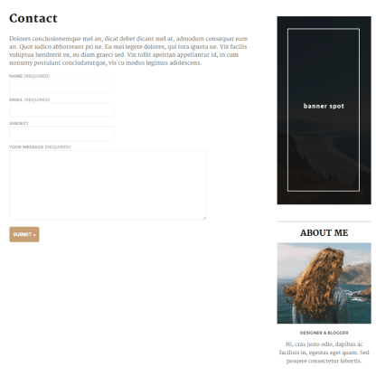 Contact page of Maybach theme
