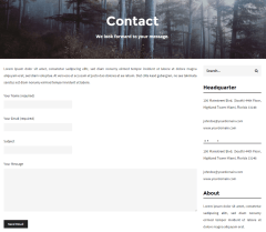 Contact us page of Pixagraph theme