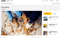Duine Featured Category Page