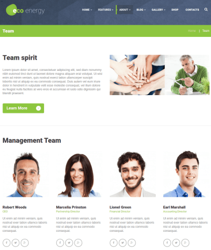 Eco-energy-team