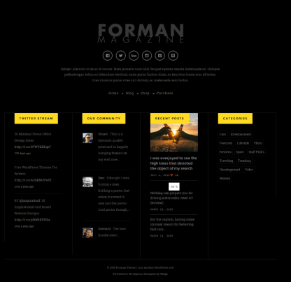 Footer section of Forman theme