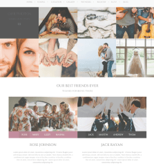 Gallery of Wedding couple theme