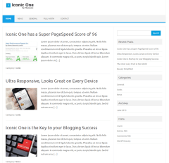 Homepage of Iconic one theme with right sidebar.
