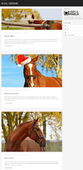 Horse club – blog with sidebar