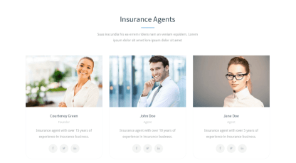Insurance Agency - team page