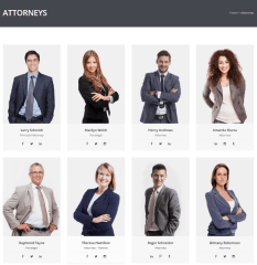 LawyerPress – Attorneys