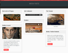 Media Posts Page – Der Golem
