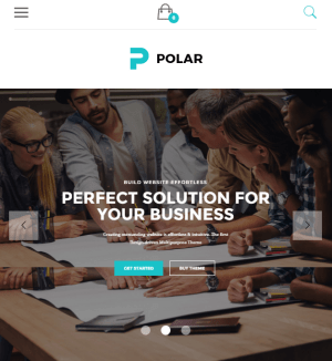 Polar - Creative Multipurpose WP theme