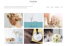 Portfolio of Simple & Elegant theme