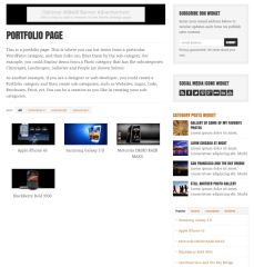 Portfolio page of WP-Critique theme