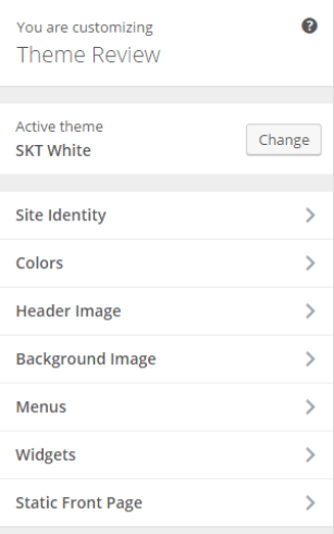 SKT White - Live Customizer options