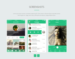 Screenshot of FlatApp theme