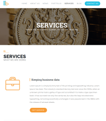 Services-WordPress-bplus