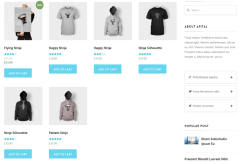Shop page of Apital theme