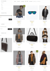 Shop page of Leka theme