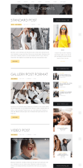 Standard posts format of Street Style theme