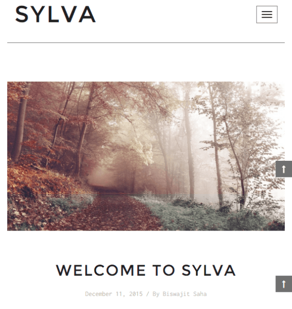 Sylva - Fully responsive Blog WordPress theme