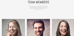 Team page of MO
