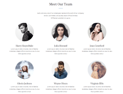 Team's page of Simple & Elegant theme